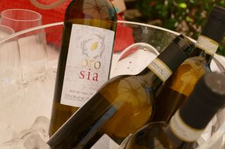 Vino Orosia